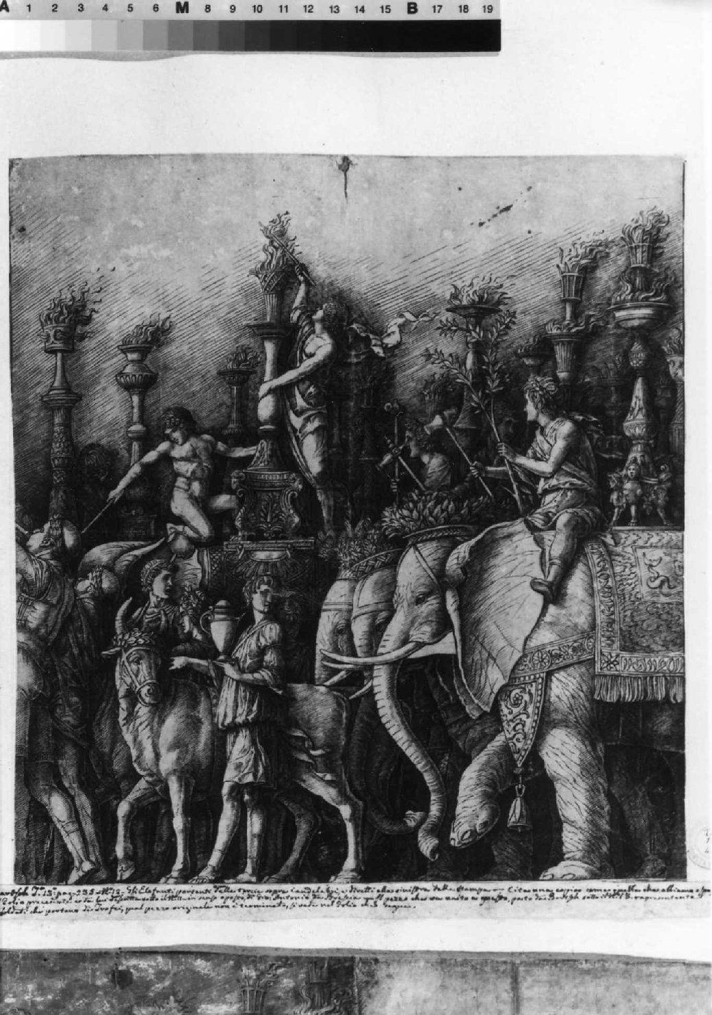 trionfo di Cesare (stampa smarginata, serie) di Mantegna Andrea (sec. XV)