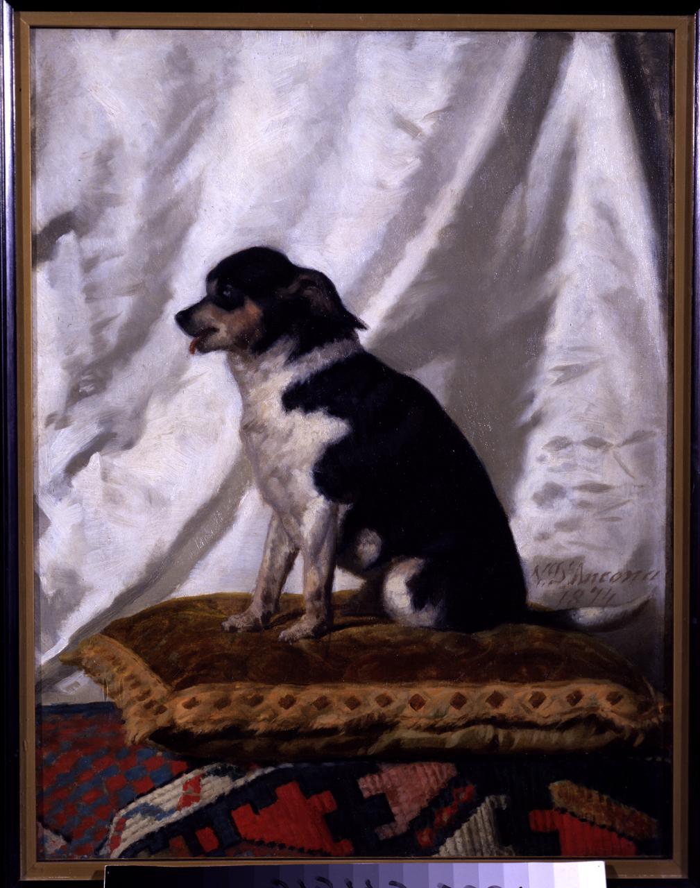 cane (dipinto) di D'Ancona Vito (sec. XIX)