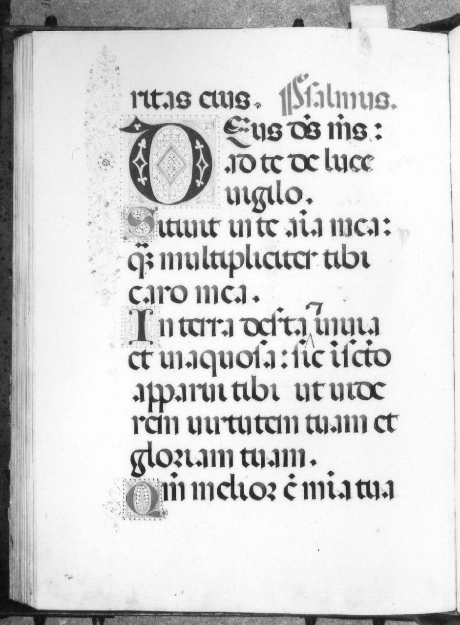 miniatura - ambito fiorentino (primo quarto sec. XVI)
