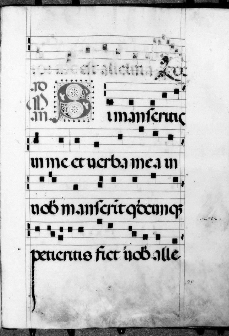 miniatura - ambito fiorentino (inizio sec. XVI, sec. XVIII)