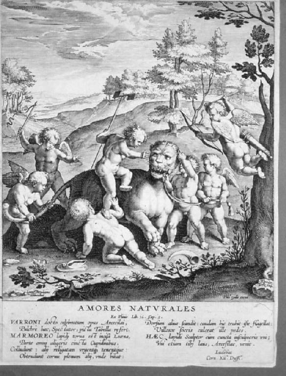 Amorini che combattono con una leonessa (stampa) di Galle Theodor, Straet Jan van der (prima metà sec. XVII)