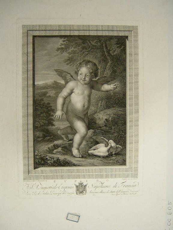 Putto con colombe (stampa) di Gaiani Antonio, Gaiani Antonio, Zampieri Domenico detto Domenichino (sec. XIX)