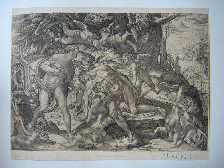 Morte di Adone (stampa smarginata) di Penni Lorenzo, Penni Lorenzo (seconda metà sec. XVI)