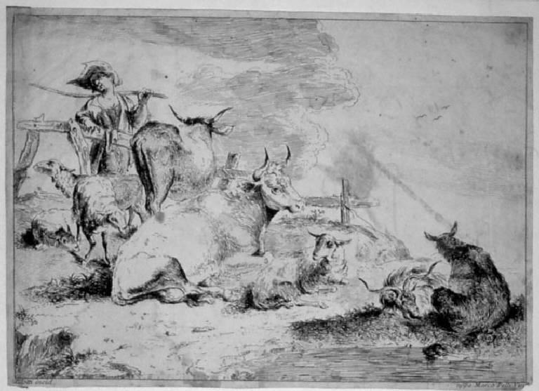 Animali al pascolo (stampa smarginata) di Zilotti Domenico Bernardo (sec. XVIII)