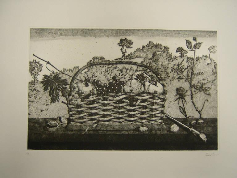 La canestra, Natura morta (stampa) di Pescatori Carlo, Pescatori Carlo (sec. XX)