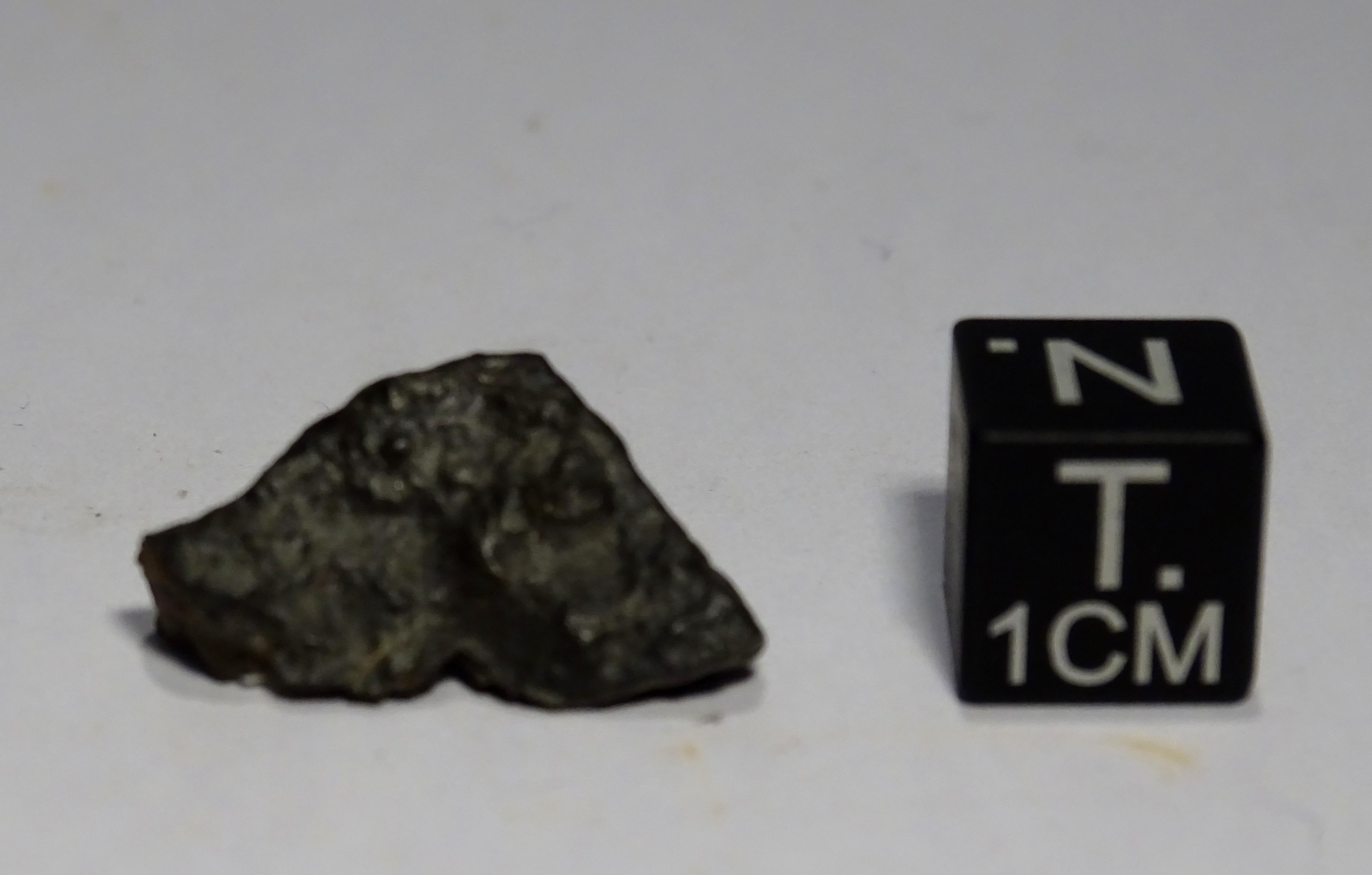 Meteorite/ Condrite Ordinaria/ Hammadah al Hamra 296 (esemplare)