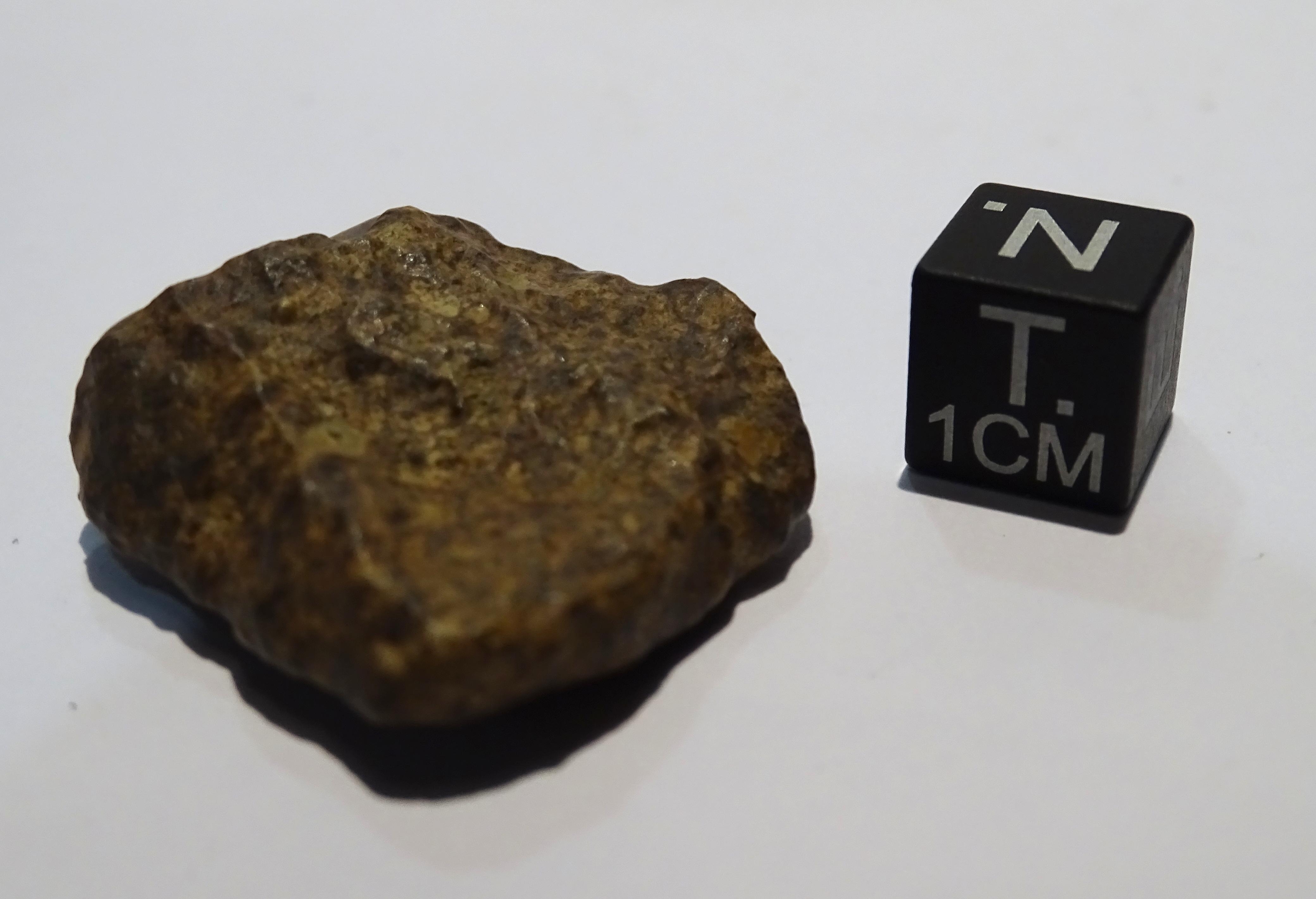Meteorite/ Condrite ordinaria/ Silet (esemplare)