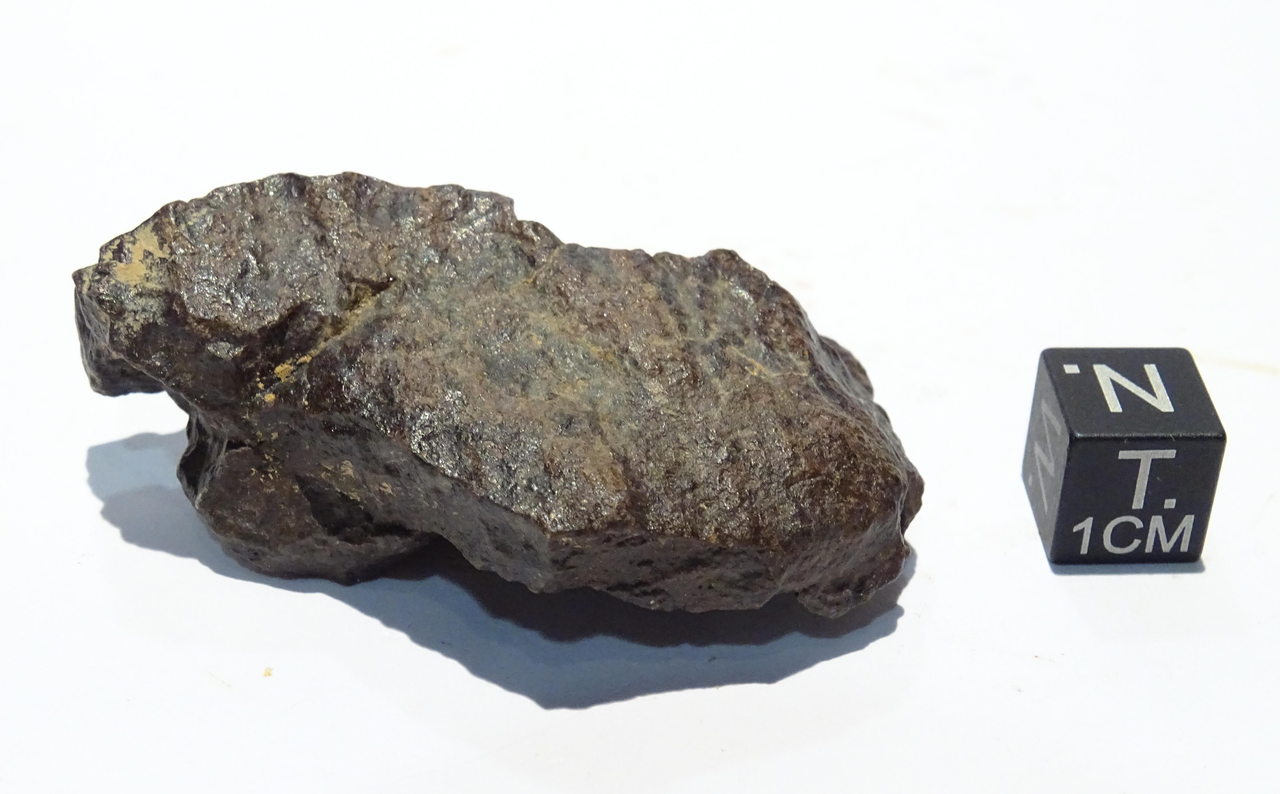 Meteorite/ Condrite ordinaria/ Dar al Gani 1005 (esemplare)