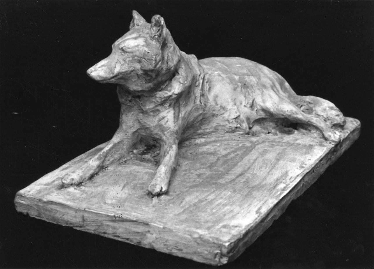 Il Lupo Vaska, cane (scultura, opera isolata) di Troubetzkoy Paolo (inizio sec. XX)