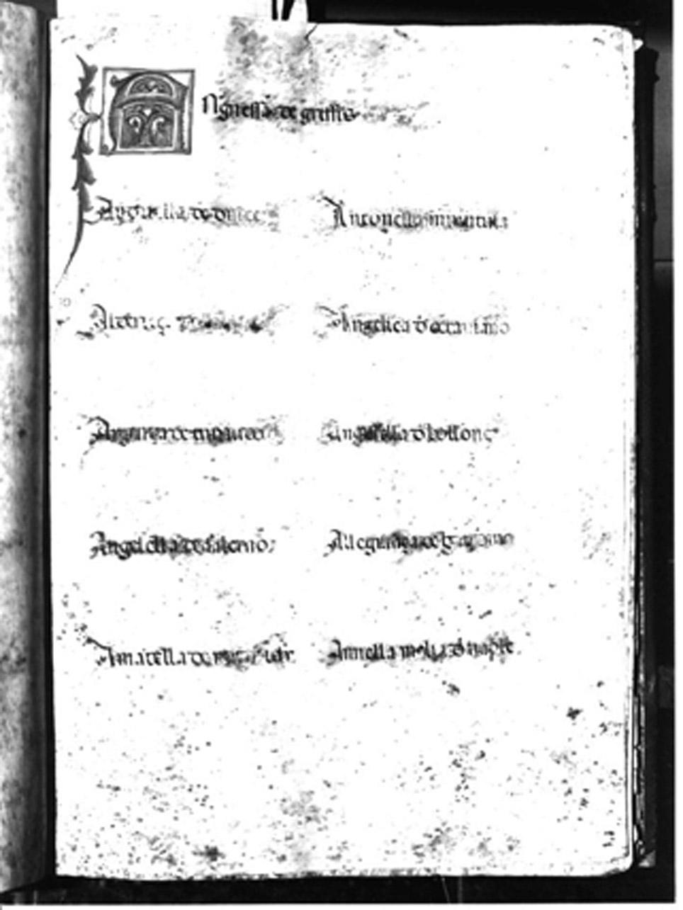 miniatura - AMBITO NAPOLETANO (Seconda metà sec. XV)