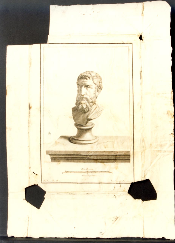 busto virile (stampa) di Vanni Nicola, Cepparoli Francesco (sec. XVIII)
