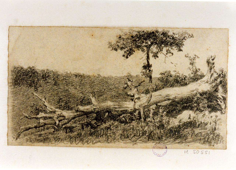 paesaggio (disegno) di Michetti Quintilio (sec. XIX)