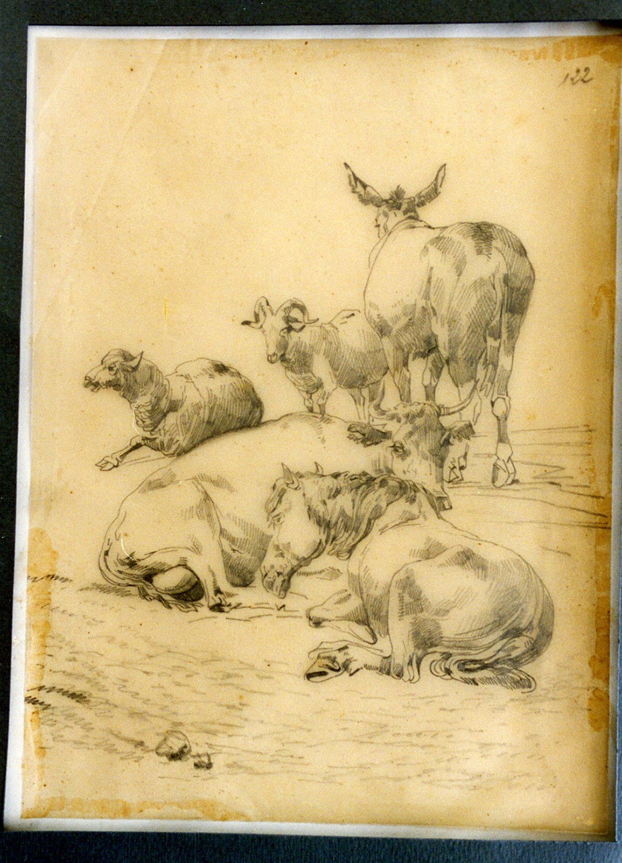 paesaggio con animali (disegno) di Carelli Consalvo (sec. XIX)