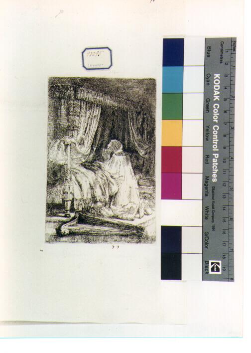 David (stampa) di Van Rijn Rembrandt Harmenszoon (sec. XVII)