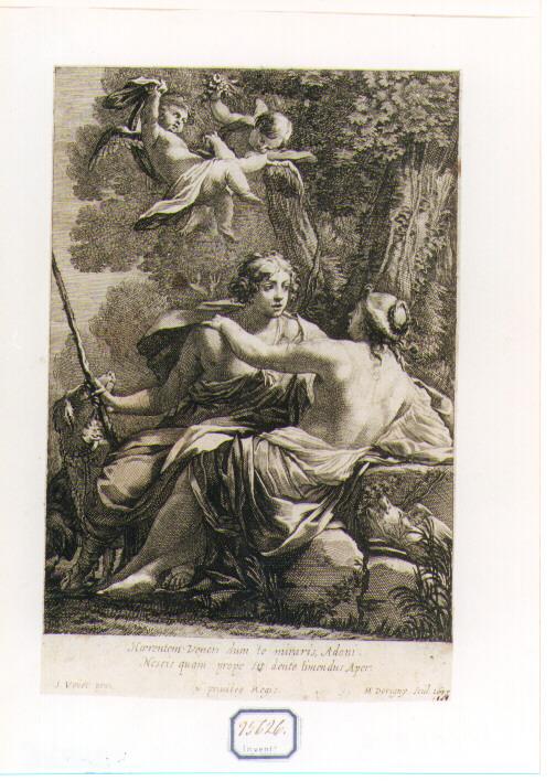Venere tenta di trattenere Adone dall'andare a caccia (stampa) di Vouet Simon, Dorigny Michel (sec. XVII)