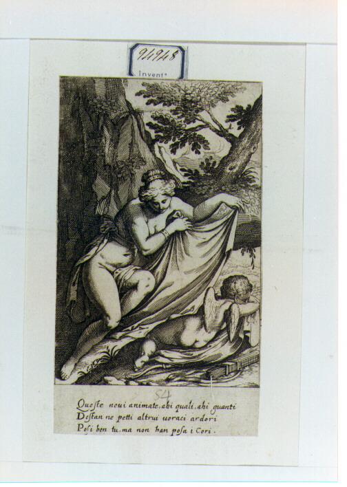 Venere ricopre con un drappo Cupido dormiente (stampa) di Fialetti Odoardo (sec. XVII)