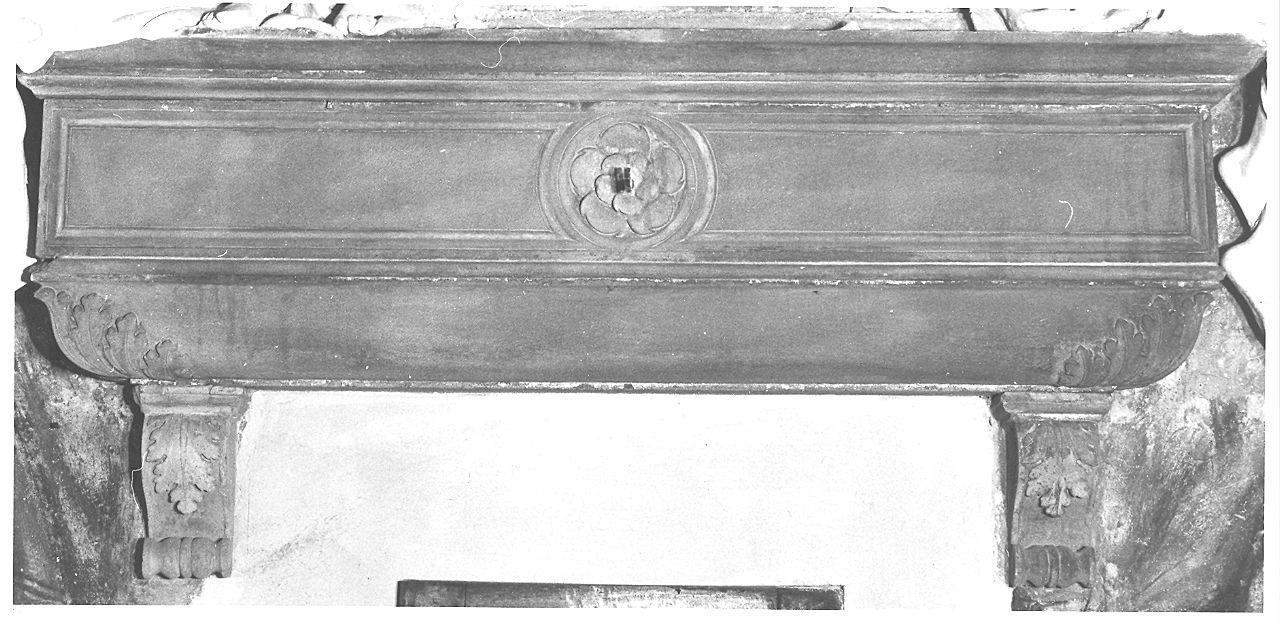 sarcofago - a cassa, complesso decorativo di Ferrari D'Agrate Antonio (attribuito) (sec. XV)