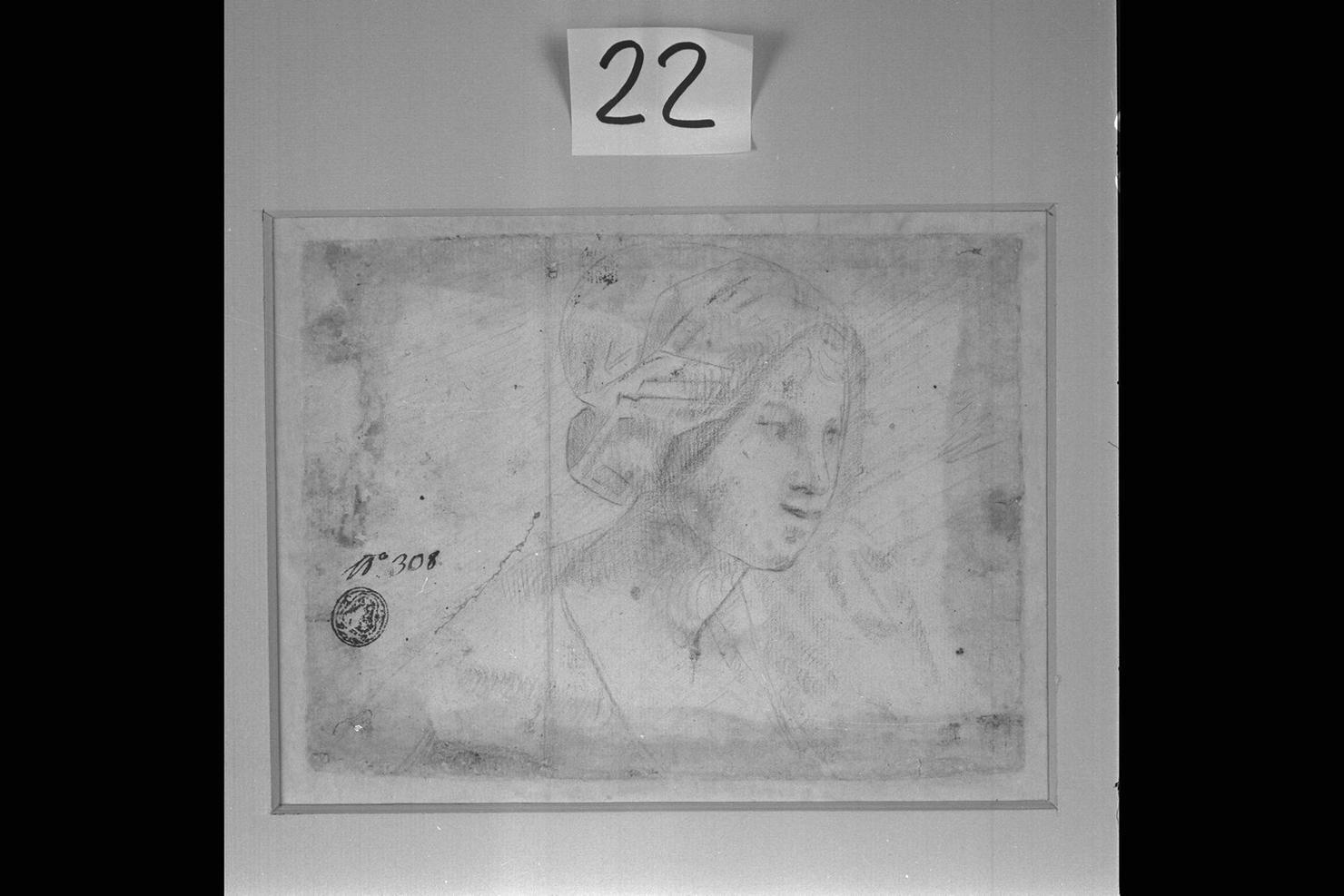 testa di donna (disegno) di Peruzzini Domenico (cerchia) (sec. XVII)