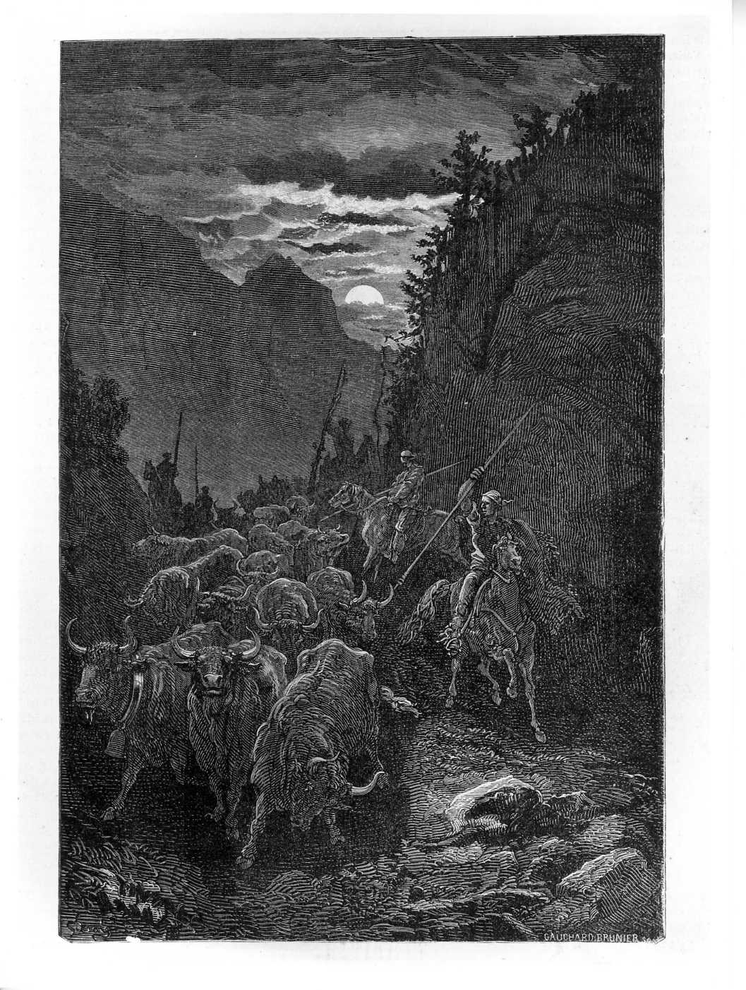 Tori condotti a Valenza di notte (costumi spagnoli), paesaggio con animali (stampa) di Doré Gustave (attribuito), Gauchard Brunier (attribuito) (sec. XIX)