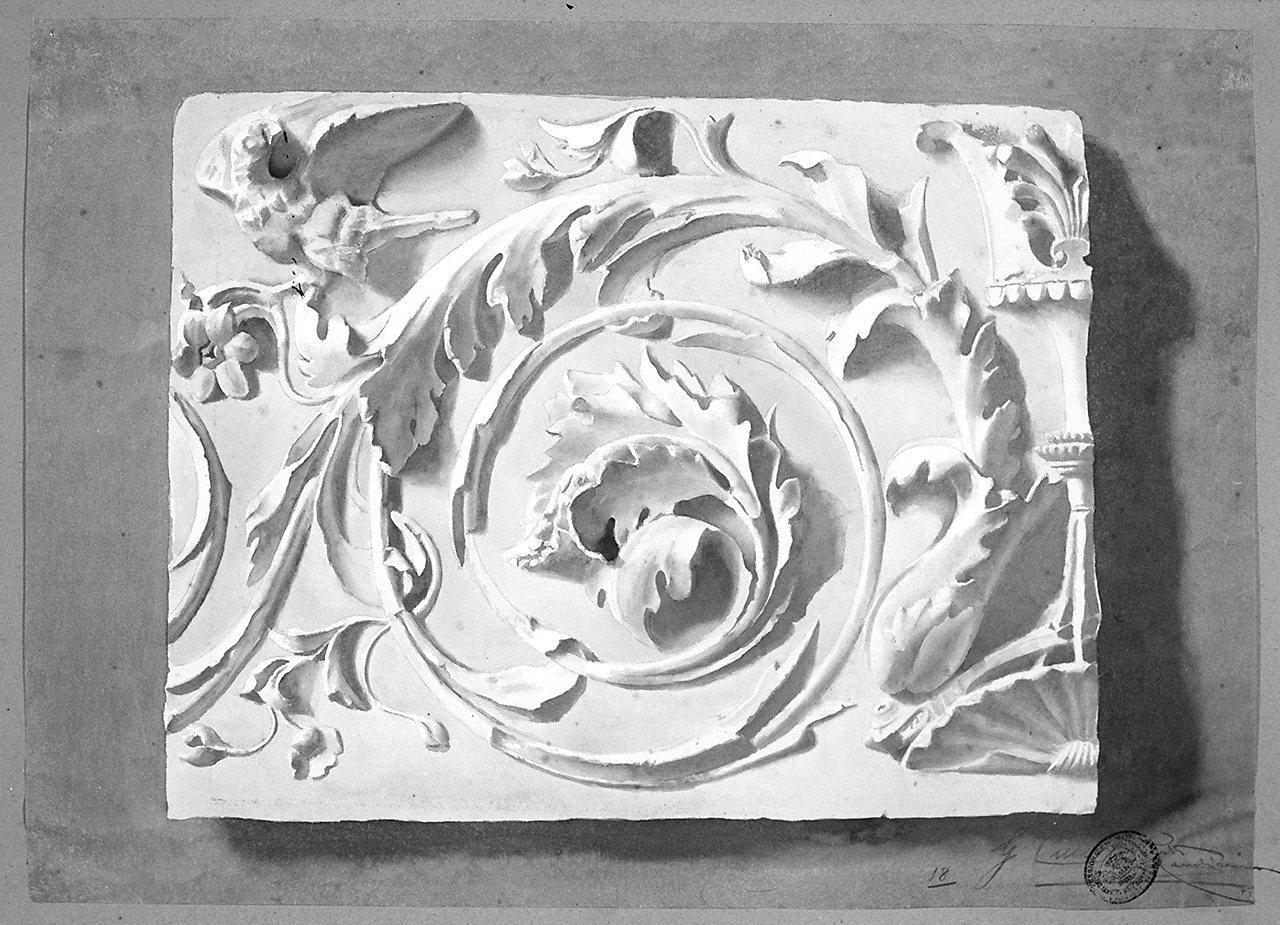 motivi decorativi a girali vegetali (disegno) di Casini Guido (sec. XX)