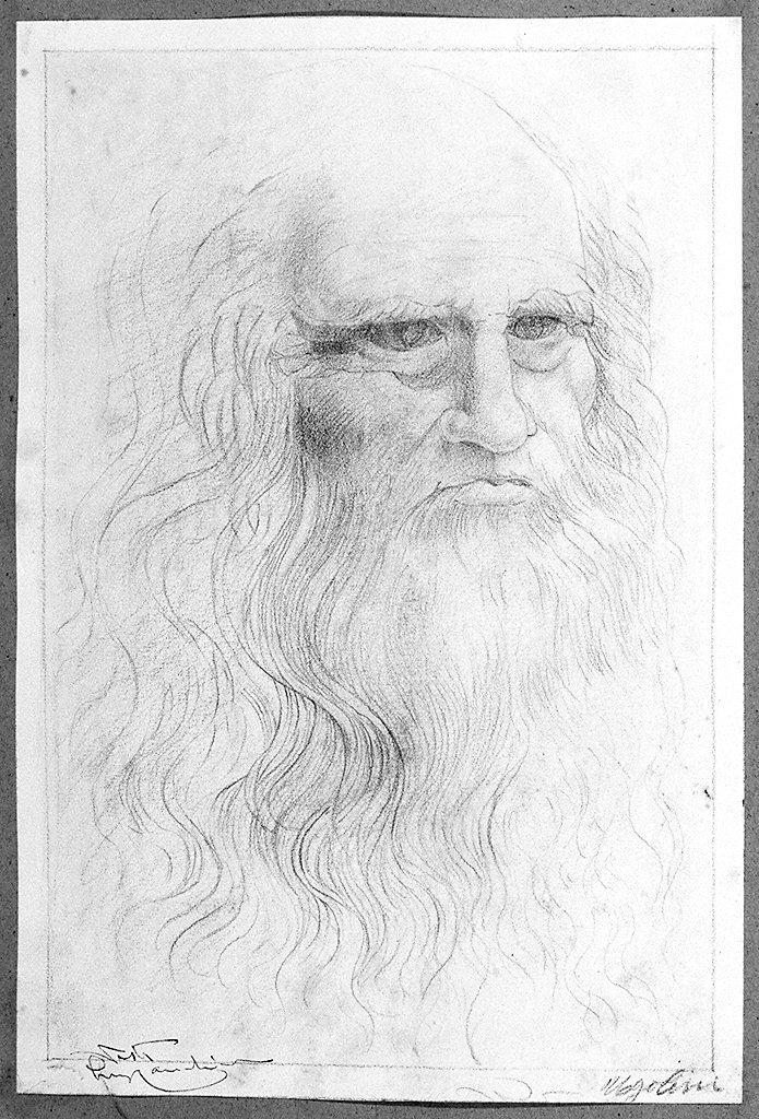 ritratto di Leonardo da Vinci (disegno) di Ugolini Anselmo (sec. XX)