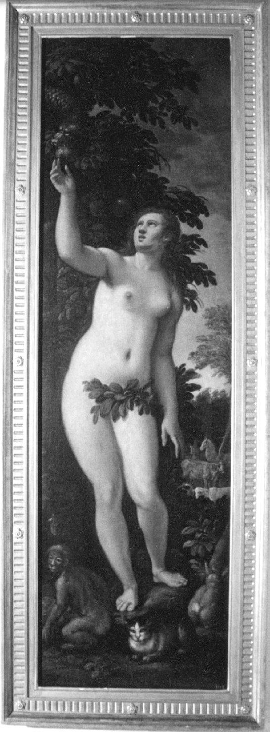 Eva, Eva coglie il frutto proibito (dipinto, opera isolata) di Del Moro Giulio (fine/inizio secc. XVI/ XVII)