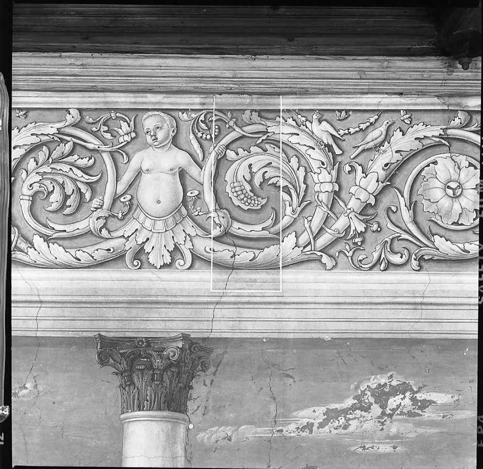 motivi decorativi a girali vegetali (dipinto) di Morone Domenico (e aiuti), Morone Francesco (fine/inizio secc. XV/ XVI)